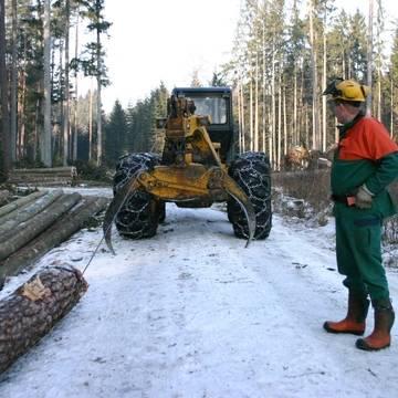 Lesnictví a zemědělství